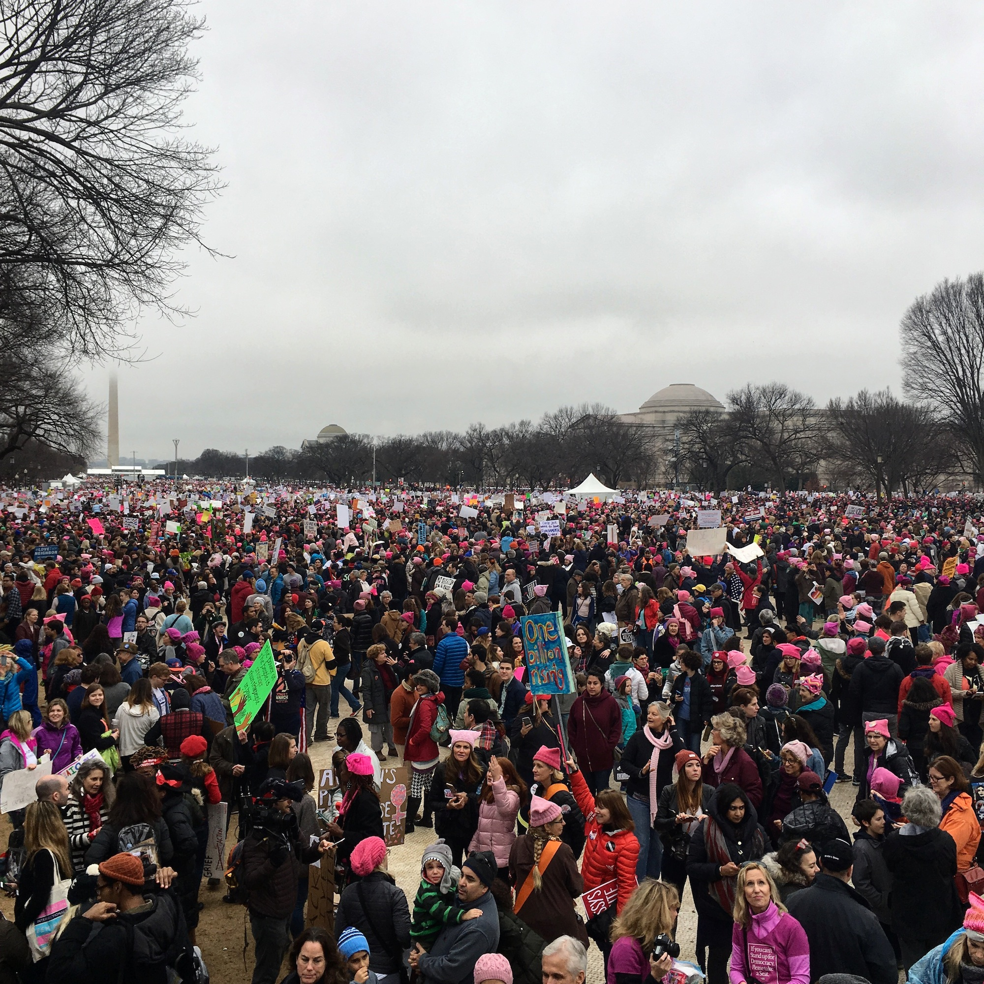 washington women march crowd