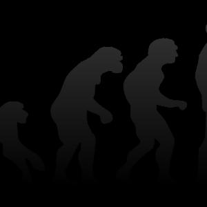 l'evoluzione spiegata da Darwin