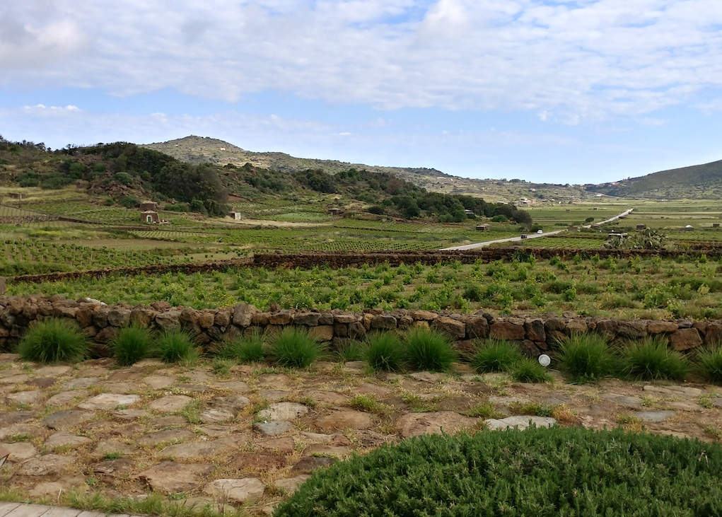 Landscape of Coste Ghirlanda.