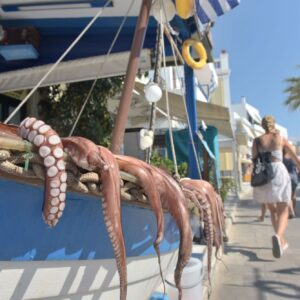 Fresh octopus sits out before being cooked in Naxos Greece. Photo Michael Lepetit