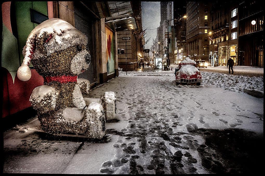 Teddy Bear, sulla 5th avenue, New York, la prima tempesta di neve dell'inverno pandemico (di Terry W. Sanders)
