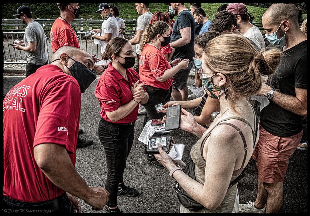 A New York le code per il concerto a Central Park (Foto di Terry W. Sanders)
