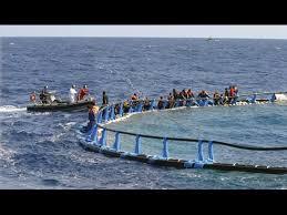 I migranti aggrappati alle gabbie dei tonni