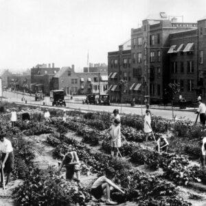 Sunnyside Gardens, 1926