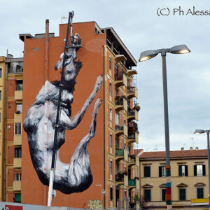 A mural by writer ROA, in Testaccio, Rome